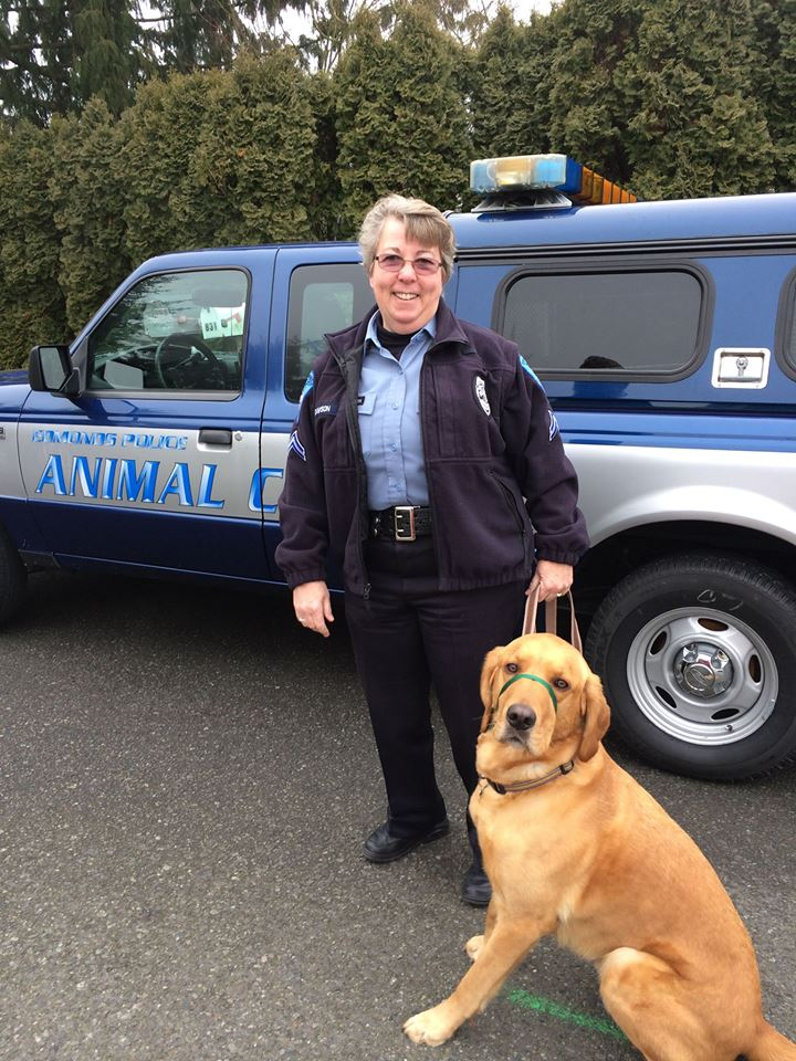 A day on the job with Edmonds Animal Control Officer Debbie Dawson