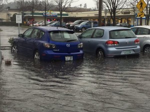 Waters rise around cars parked in the Salish Crossing parking lot. (Photo by John Lewis)