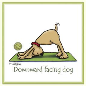 Downward facing dog image