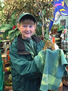 """Thayer """"The Frog Lady"""" Cueter holds the infamous """"Snohomish Slew"""" in his home at the Just Frogs Toads Too Amphibian Center."""