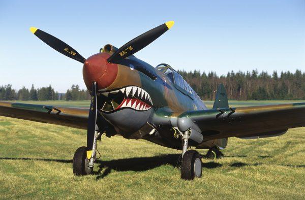 Flying Heritage fighter plane.