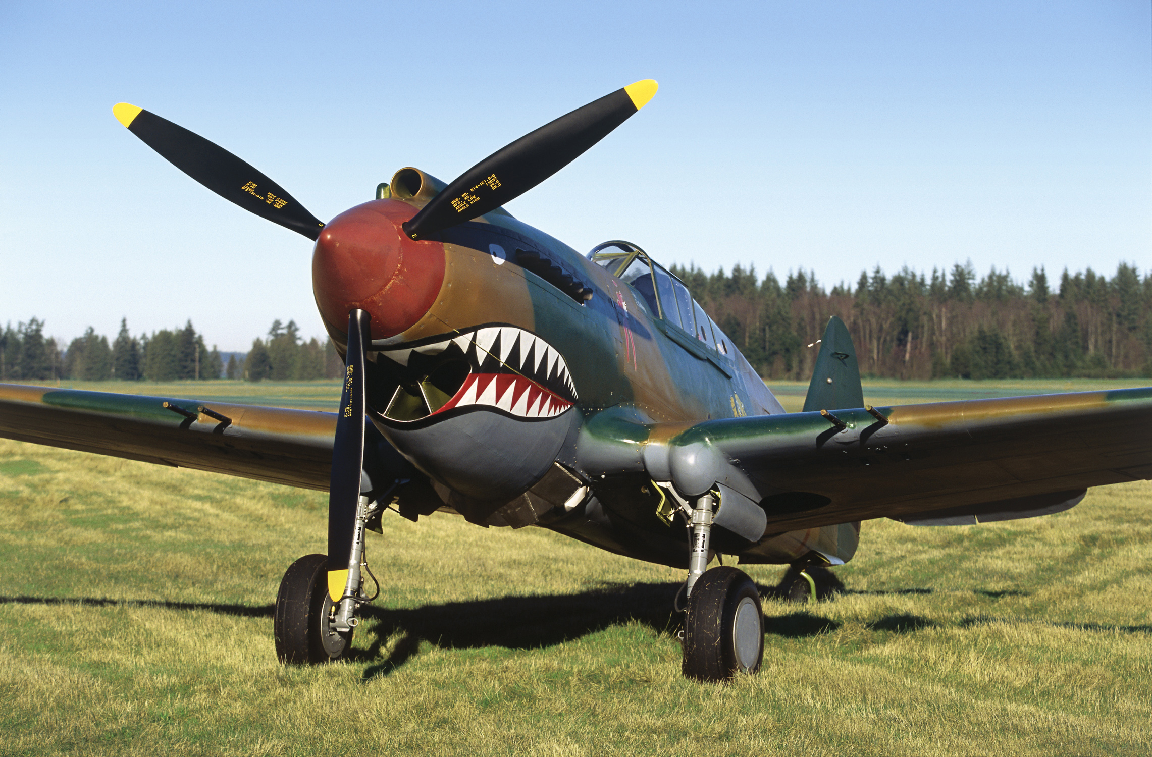 Day Trip Discoveries: Vintage planes soar May 21 at Paine ...