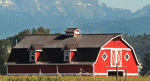 Stocker Farms