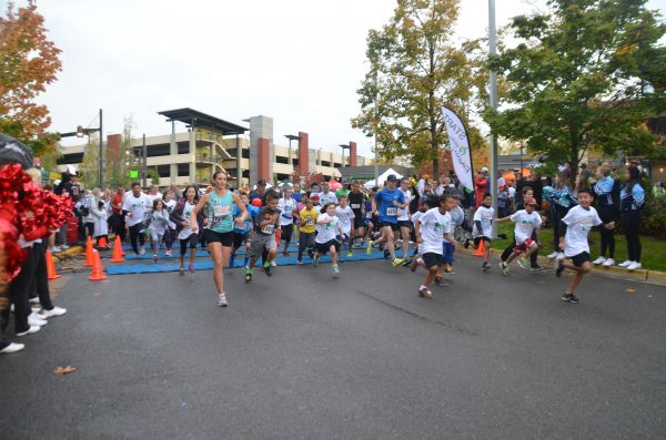 A crowd of runners takes off as the 2016 Celebrate Schools 5K begins. (Photo by Natalie Covate)