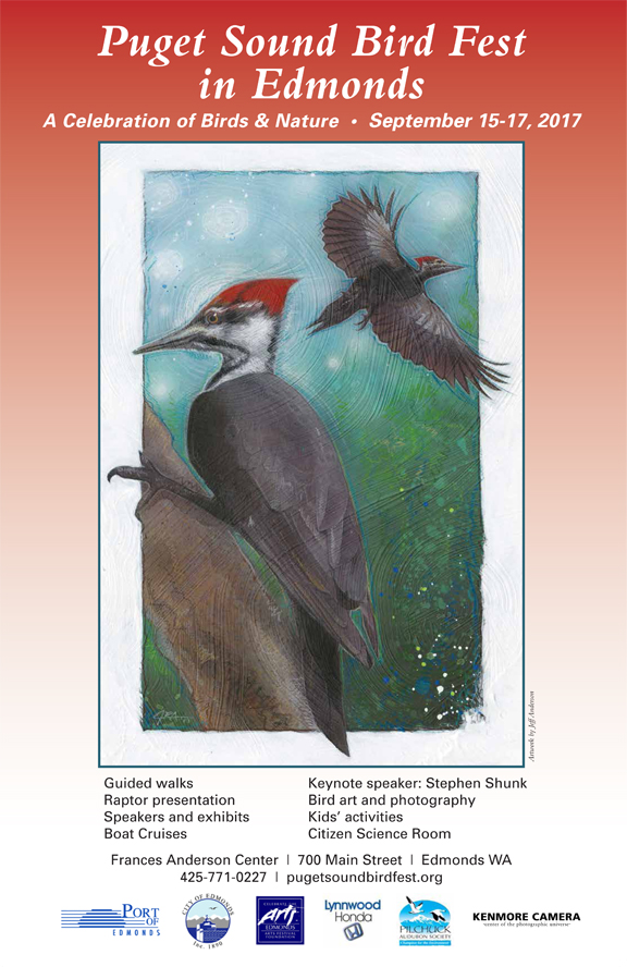 Entries Sought For Puget Sound Bird Fest 2018 Poster Art Contest