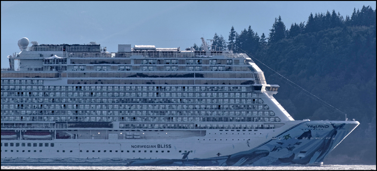 Kid Friendly Cruise Lines Site Cruisecritic Com