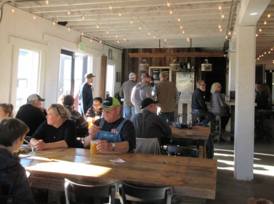 Haywire Brewing Co. taproom.