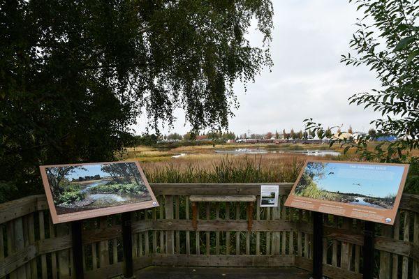 Marsh photo station